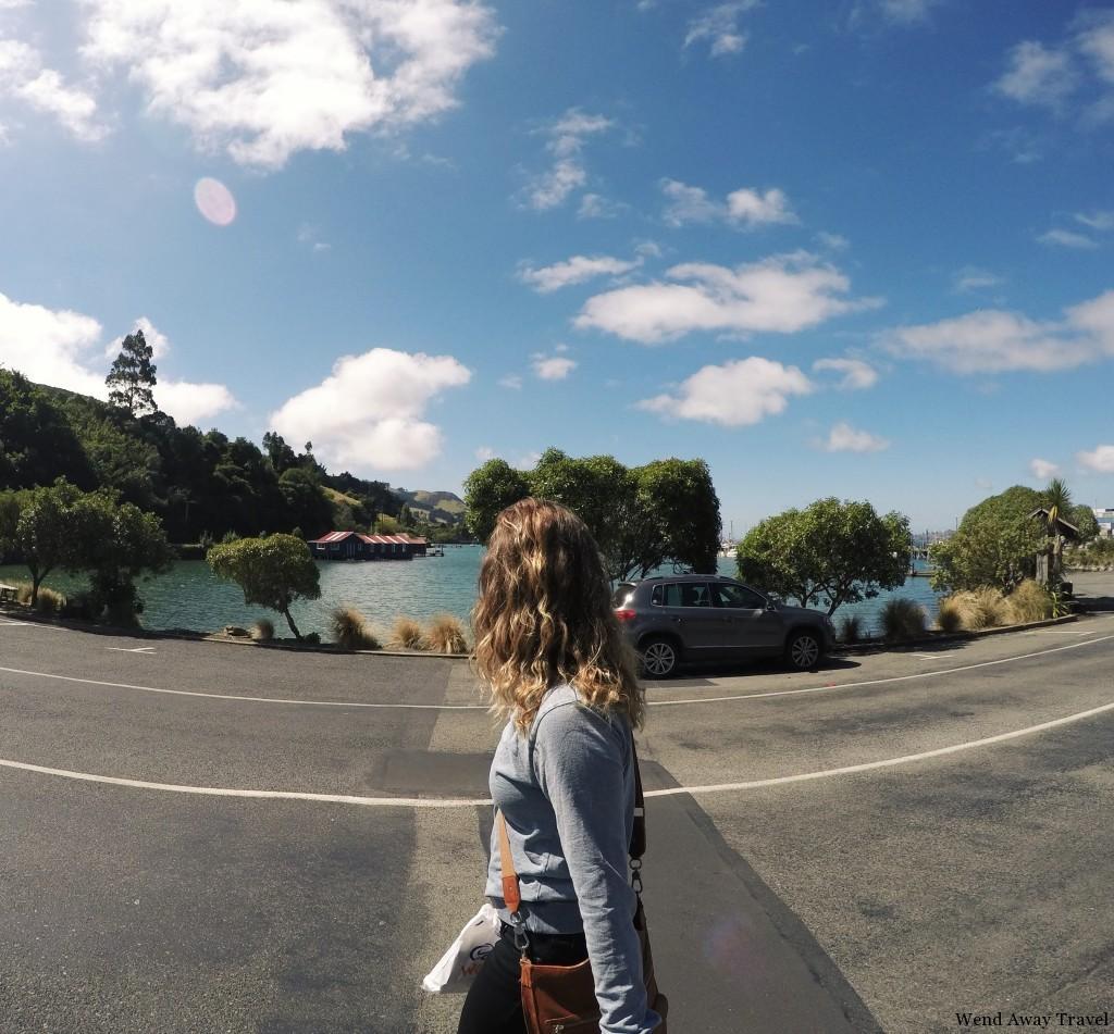 Otago Peninsula, Carey's Bay